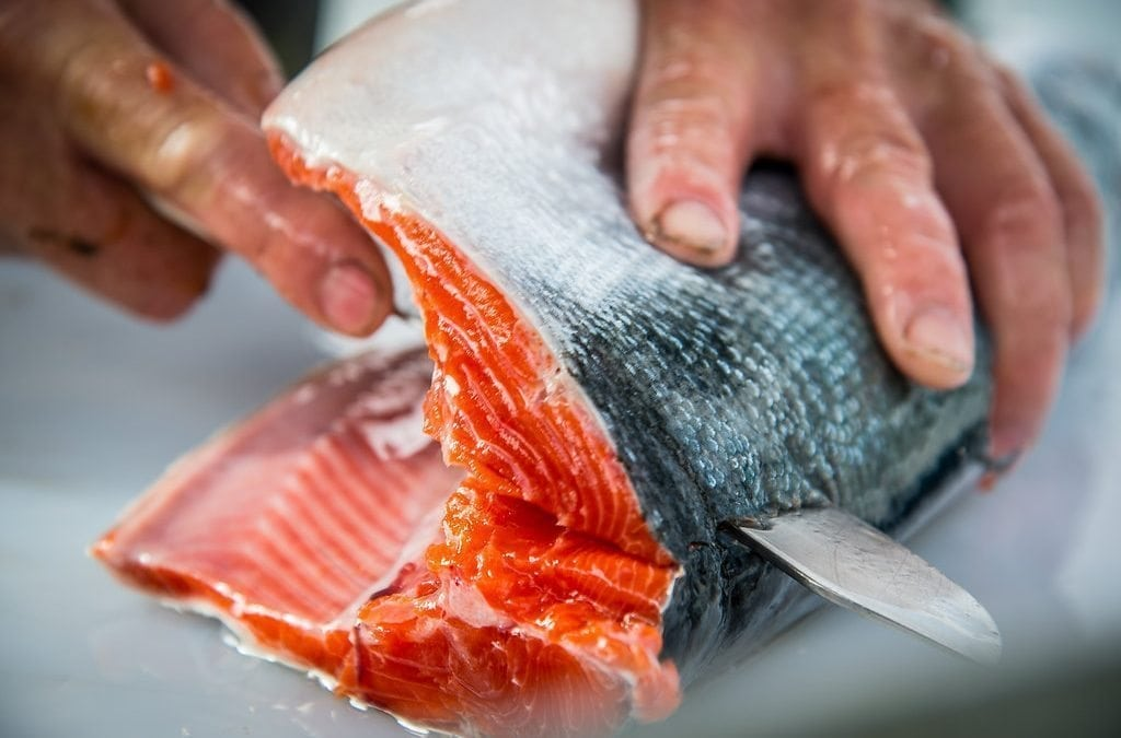 Copper River Salmon Filleting