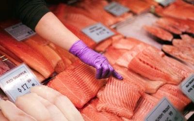 5 Types of Pacific Salmon Varieties